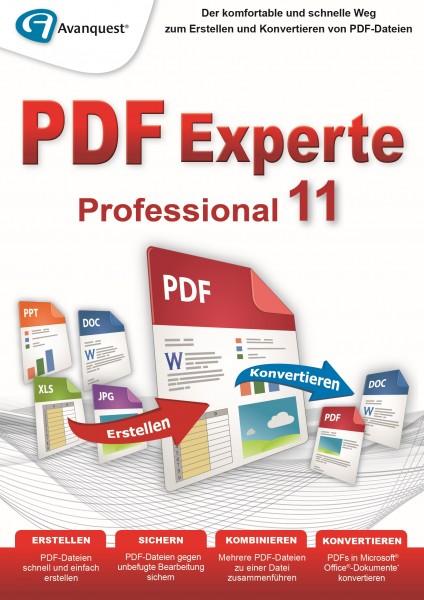 PDF Experte 11 Professional #Key (ESD)